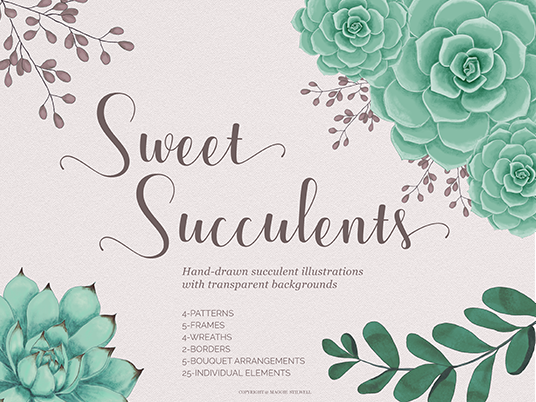 Sweet Succulents