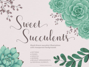 Sweet Succulents Design Set