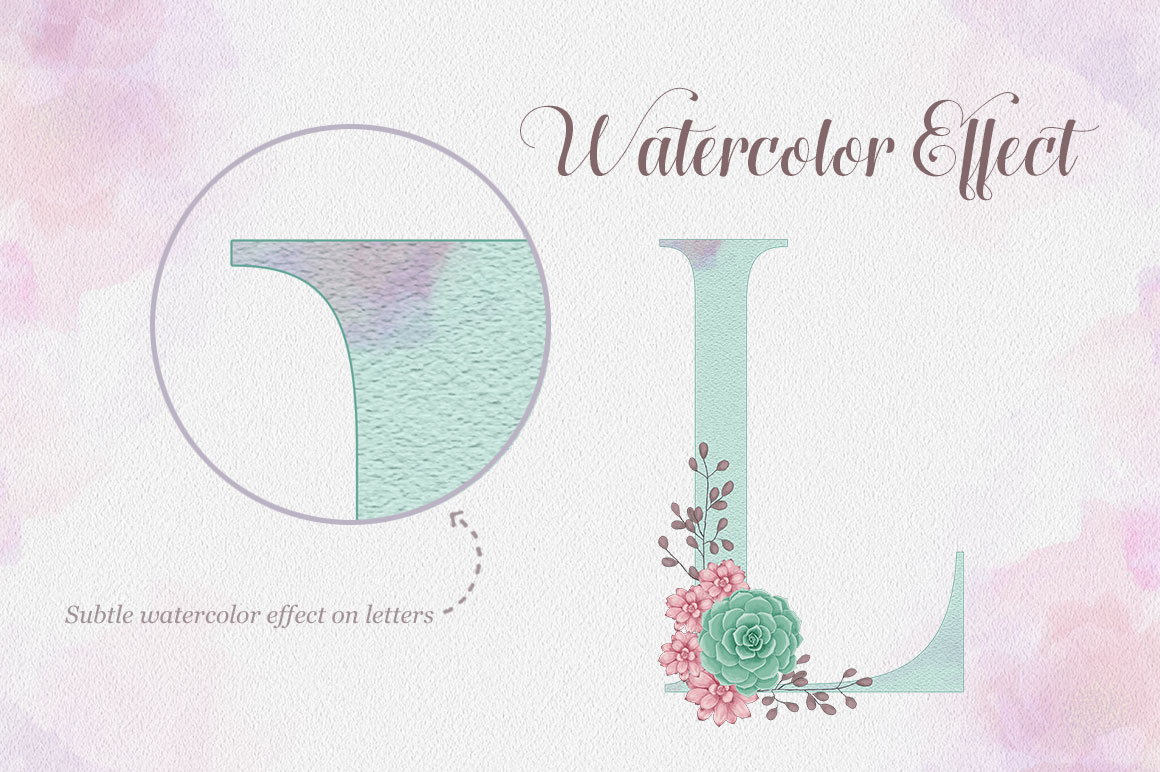 Succulent Alphabet
