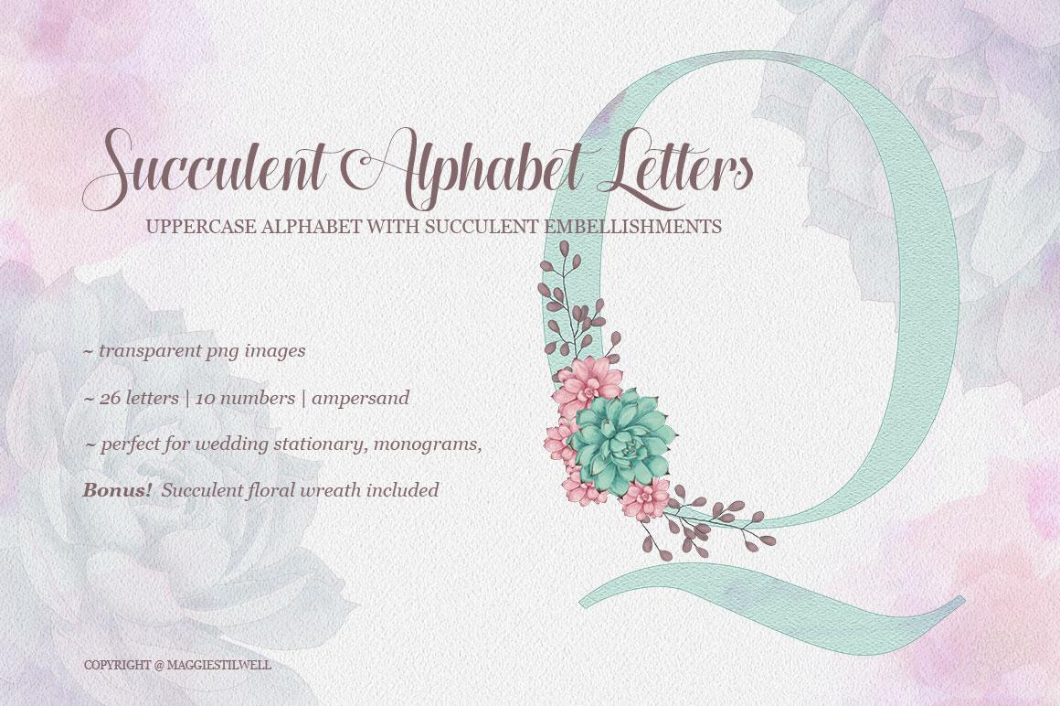 Succulent Alphabet Letters